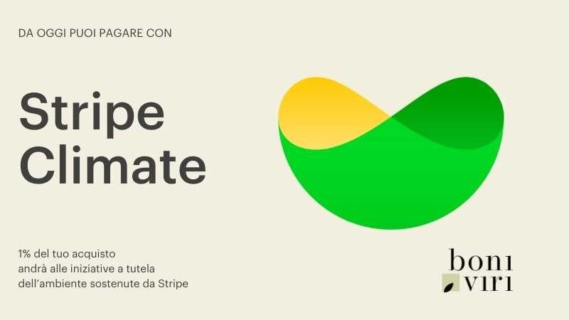 Boniviri together with Stripe Climate to protect the planet
