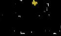 logo-definitivo-tracciatirid-2