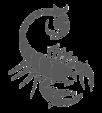 scorpiong