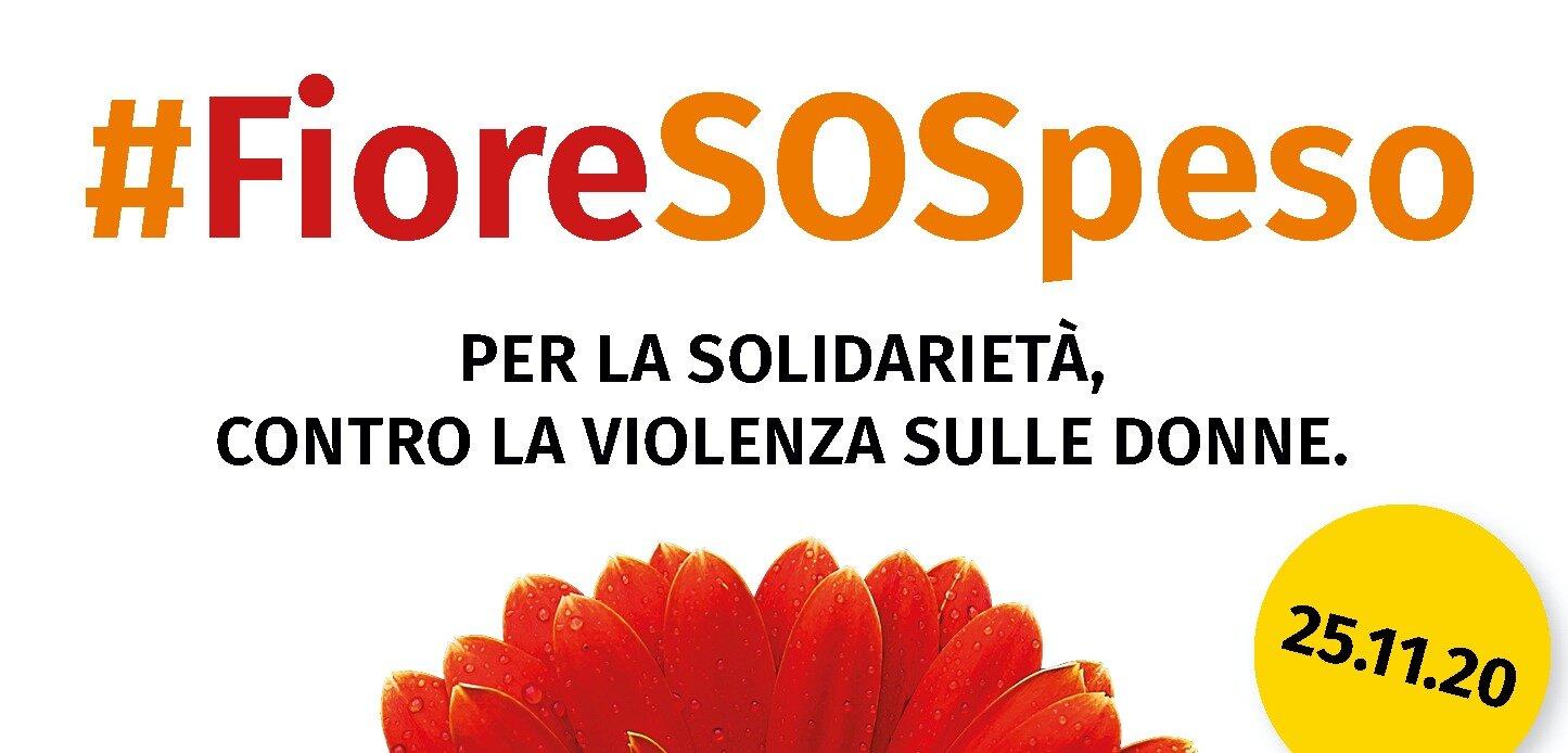 Il 25 NOVEMBRE, UN FIORE SOSPESO CONTRO LA VIOLENZA SULLE DONNE