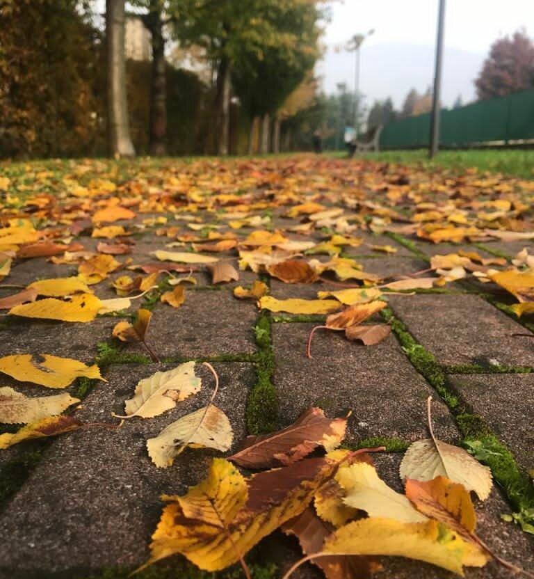 L'autunno secondo la tradizioni orientale