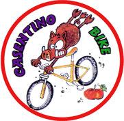 casentino-bike-cinghiale-c