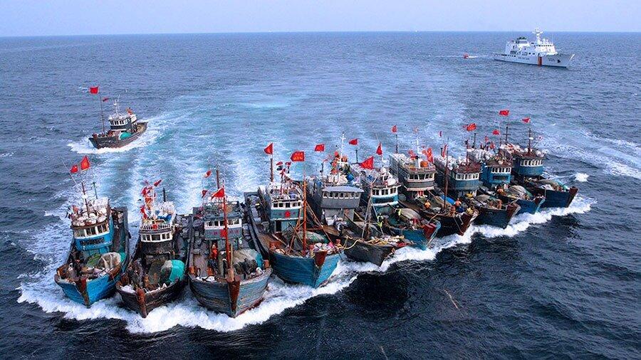 """Master """"Gestione strategica delle risorse ittiche e prevenzione delle condotte illecite"""": riapertura bando"""