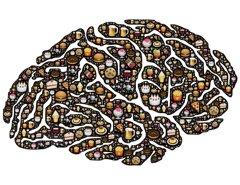 brain-9548211920