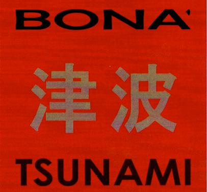 Tsunami: Gianmaria Bonà
